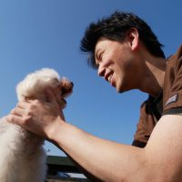 DOG-LOVE1